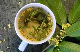 桂花茶的功效與作用:飲用要適量