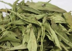 甜菊叶的功效与作用:大量饮用会腹泻