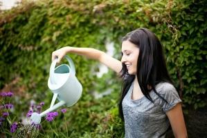 夏季给植物浇水的正确姿势