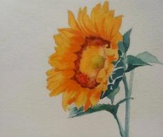 花的另一种美:艺术家笔尖上的花儿