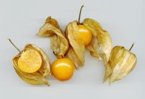 酸浆/姑娘果有什么价值及用途:食用入药观赏均可
