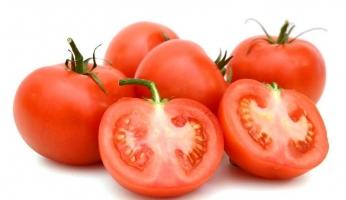 番茄和西红柿的区别