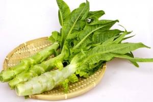 莴苣是什么:不同的地方对莴苣的称呼不一样,有叫菜头、莴笋或笋菜