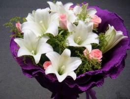 百合花适合送什么人:送母亲,送恋人或者亲密的朋友都可以