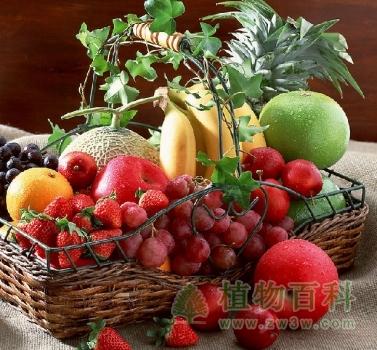 夏天的水果有哪些--你都吃过吗