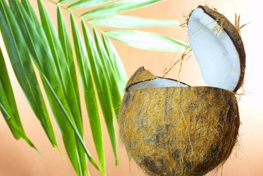 热带水果:椰子