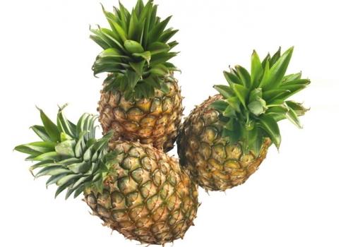 挑选菠萝摸硬度