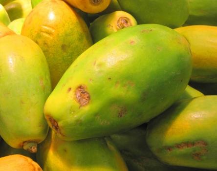 快腐烂的木瓜