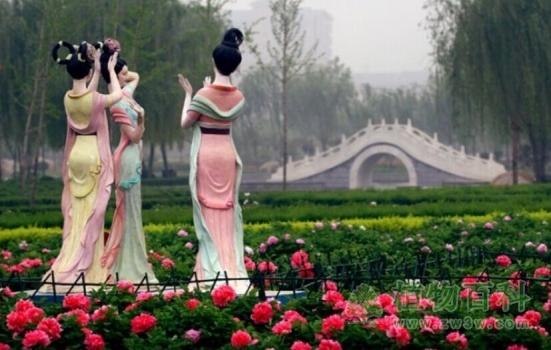 隋唐城遗址植物园790余种19.5万余株牡丹开放(图)