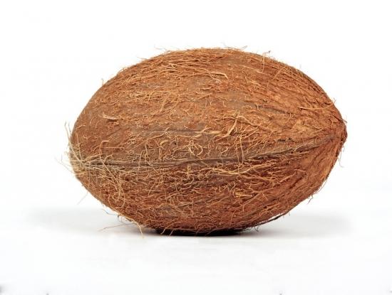 近拍椰子图片