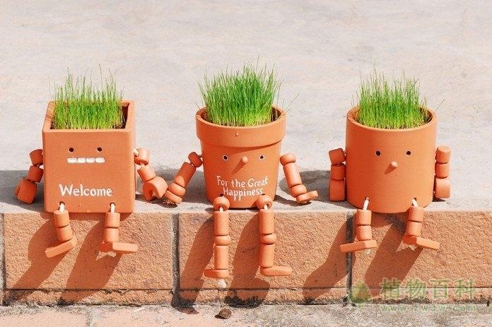 韩国研究根据植物运动来造机器人