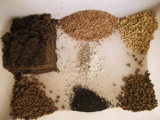 多肉播种怎样配土:多肉播种的三种配土方案介