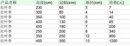 红叶李市场价格参照表