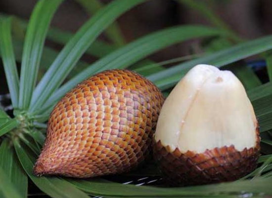 孕妇能吃蛇皮果吗