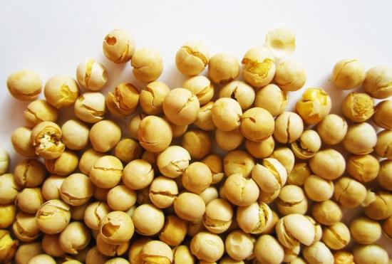 鹰嘴豆价格
