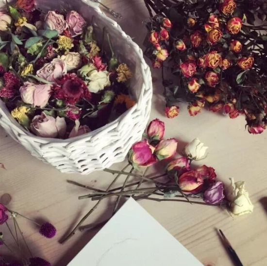 5种超简单又实用的干花制作教程,让花儿永不凋谢!